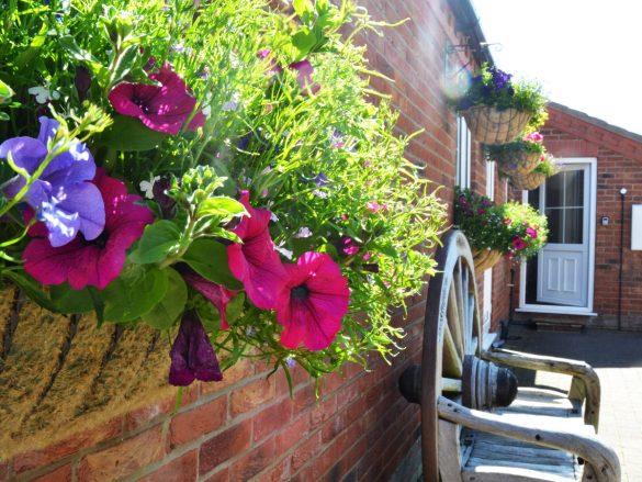 furze-farm-holiday-cottage-exterior